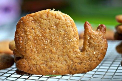 cinnamon sugar cookies2