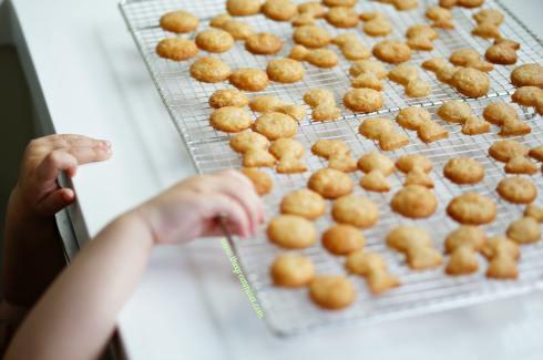 cheddar goldfish crackers 3